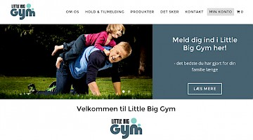 Little Big Gym